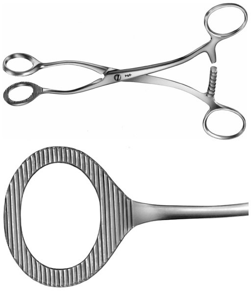 AE-AN709R, COLLIN, SPONGE HOLDING, ORGAN AND TISSUE GRASPING FORCEPS, 170 mm, 6 3/4""