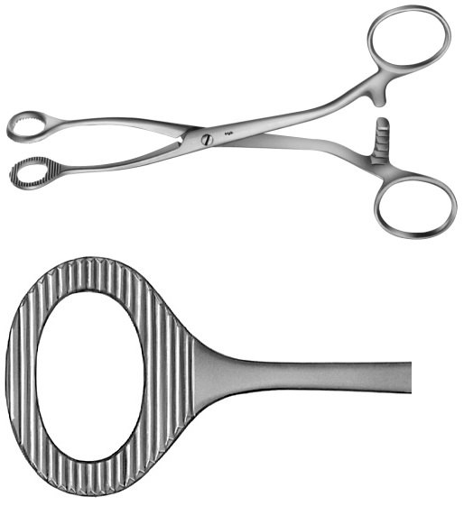 AE-BH906R, COLLIN, SPONGE HOLDING, ORGAN AND TISSUE GRASPING FORCEPS, OVAL, 	160 mm, 6 1/2""
