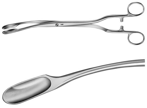 AE-ET315R, WINTER, PLACENTA AND OVUM FORCEPS FIGURE 2,W.RATCHED 290 mm, 11 1/2""